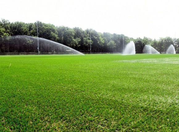 Papendal - trainingsveld Vitesse